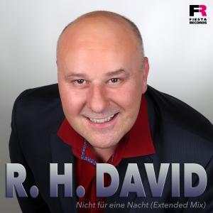 Nicht für eine Nacht - R.H. David