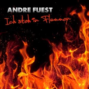 Ich steh in Flammen - Andre Fuest