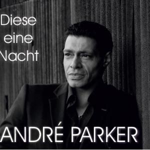Diese eine Nacht - Andre Parker