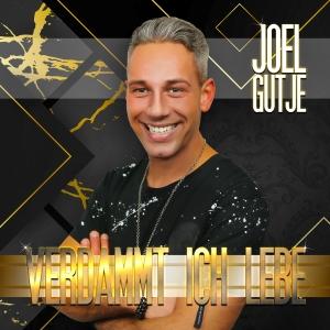Verdammt ich lebe - Joel Gutje