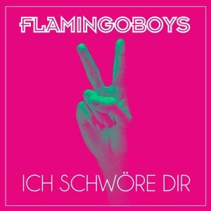 Ich schwöre Dir - Flamingoboys