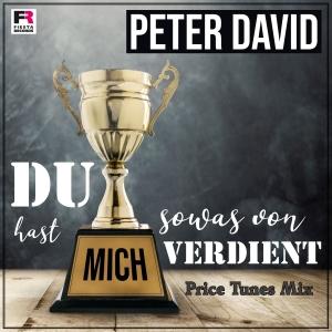 Du hast mich sowas von verdient (Price Tunes Mix) - Peter David