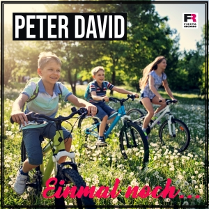 Peter David - Einmal noch