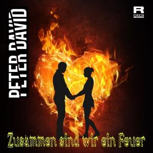 Peter David - Zusammen sind wir ein Feuer